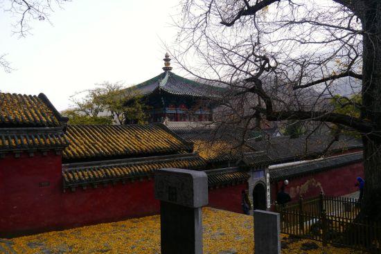 Shaolin Temple scene