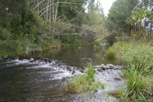 Creek_Small