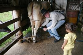 Milking Zynya_small